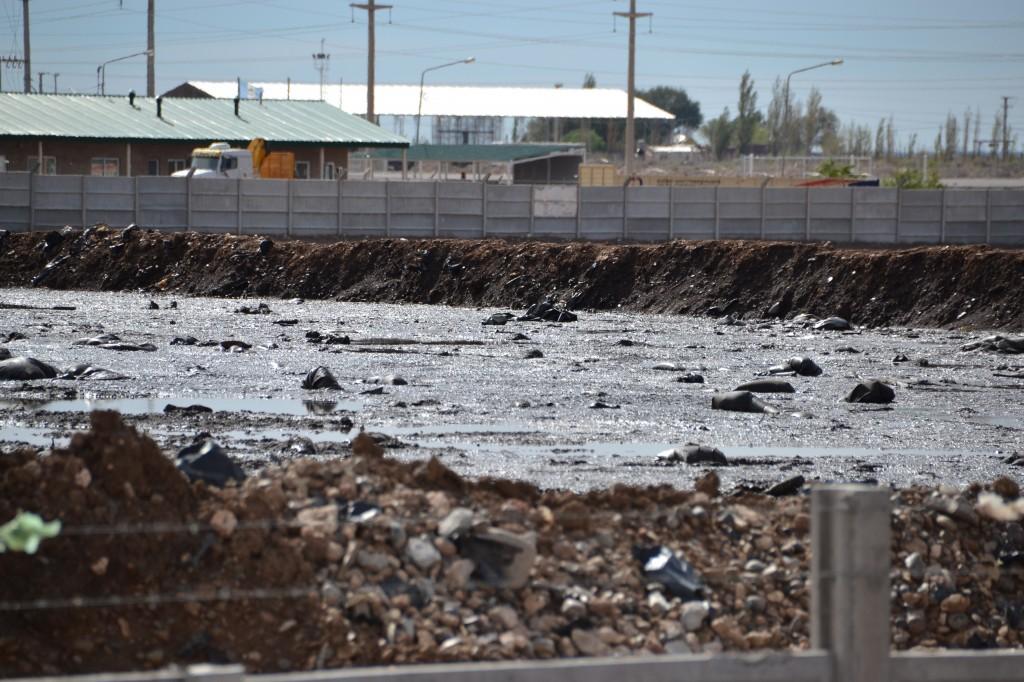 Basurero petrolero Comarsa Pileta de cutting a cielo abierto Neuquén Capital